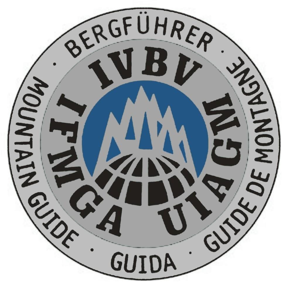 stemma UIAGM elaborato